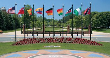 Flags at DSU